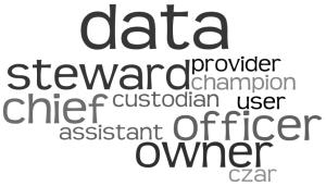 Data Roles