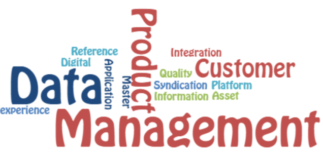 Data Management New Wordle