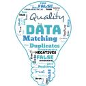 Data Matching Bulb