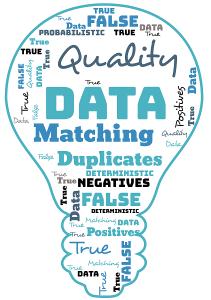 Data Matching Group